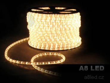 LED had teplá bílá 100m 24 diod/m